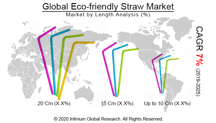 Global Eco-friendly Straw Market