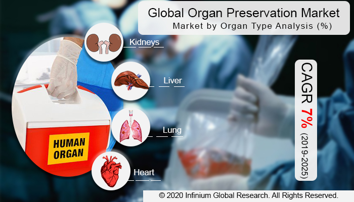 Global  Organ Preservation Market