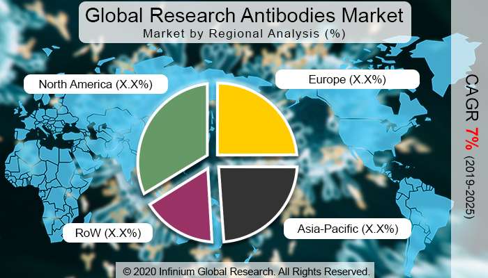 Global Research Antibodies Market